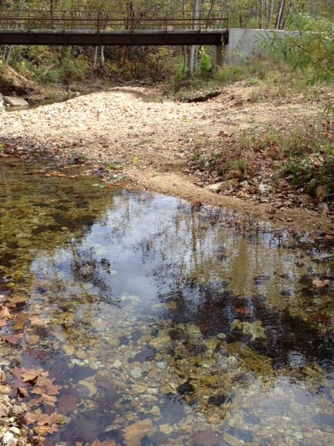 Godi Excavation_Creek Cleaning 2